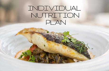 Individual Nutrition Plan